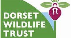 Dorset Wildlife Trust Logo