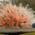 Watermelon exploding in slow motion