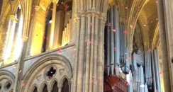 Poppies falling in Truro Cathedral