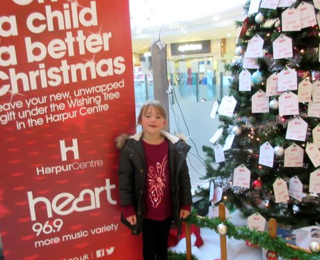 Harpur Centre Wishing Tree