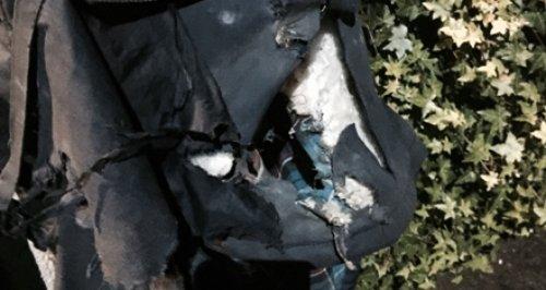 Wimborne firework assault pocket