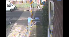CCTV images show a dog punched four times