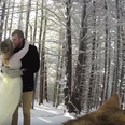 couple let dog film their wedding youtube