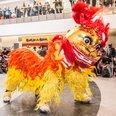 Marketing Manchester - Chinese New Year