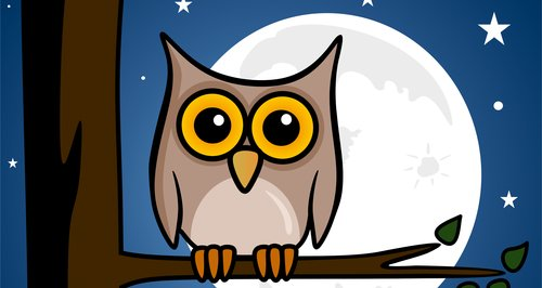 Image result for evening owls cartoon