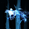 Your Patronus Pottermore horse