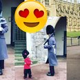 Little boy costume queen's guard salute photo vide