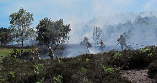 Christchurch heath fire arson